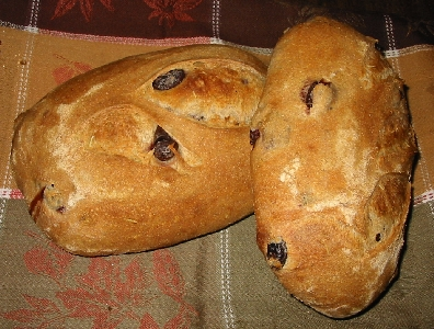Two loaves of Rosemary Calamato bread